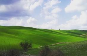Paesaggi1
